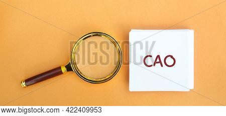 Note Cao And Magnifying Glass. Chief Accounting Officer. Vacancy And Duties Of A Specialist. Manage