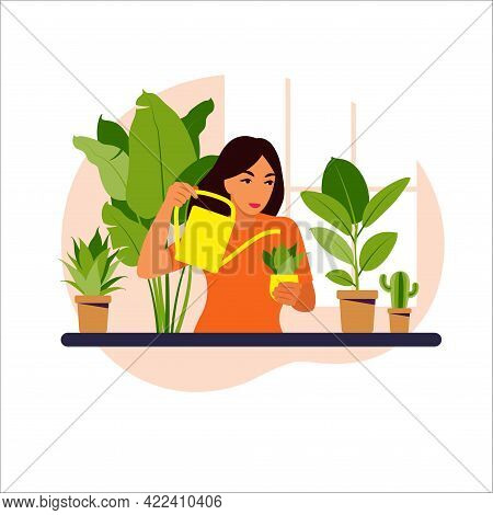 Woman Watering Houseplants At Home Vector Illustration. Stay Home, Lifestyle, Home Garden And Housep