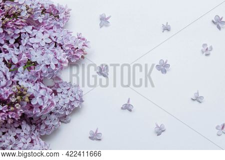 Purple Lilac Bouquet With Abstract Scattered Flowers On A White Background With Copy Space, Flat Lay