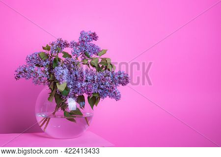 A Bouquet Of Lilacs In A Vase On A Pink Background . Postcard Flowers On A Pink Background . Spring