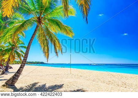 Tropical White Sandy Beach With Palm Trees. Saona Island, Dominican Republic. Vacation Travel Backgr