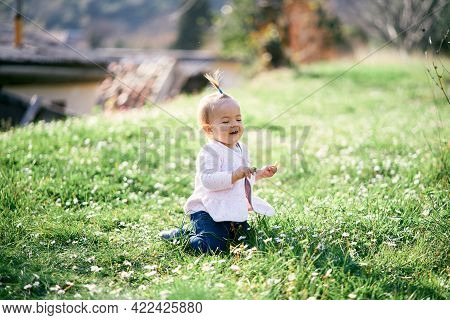 Laughing Little Girl With A Ponytail On Her Head Sits On Her Knees On A Green Lawn Among White Daisi
