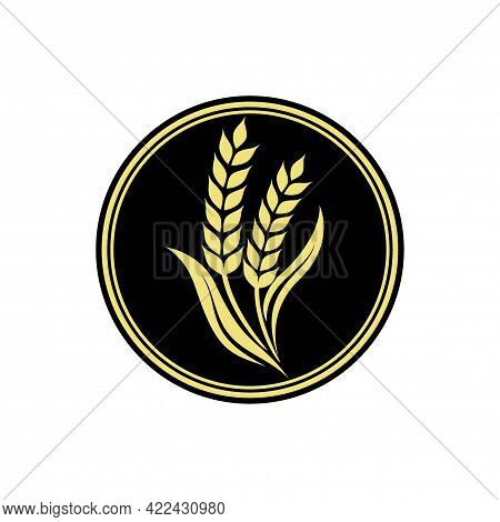 Wheat Rice Agriculture Logo Inspiration Vector