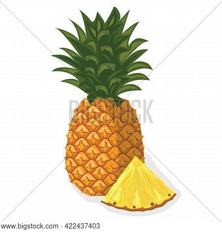 Tropical Fruit Pineapple. Useful Organic Natural Fruit. A Piece Of Juicy Fresh Pineapple. Diet Menu.