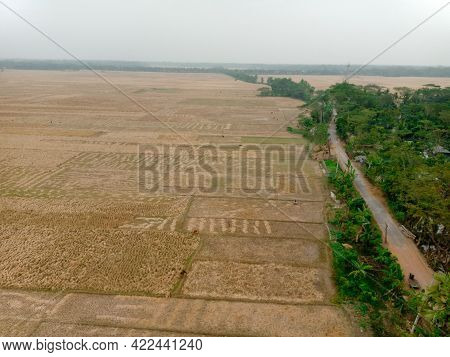 View Of West Gudighata Village In Barguna.  The Picture Was Taken From The Top Of The Tower