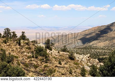 Arid Mountain Ridges Covered With Pinyon Pine Trees Overlooking The Mojave Desert Taken In The Rural