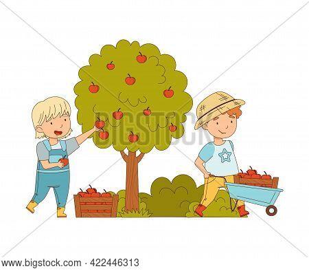 Little Girl And Boy Gathering Apples In Wheelbarrow Working On The Farm Vector Illustration