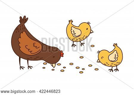 Hen With Yellow Chick Walking In The Yard Picking Grain Vector Illustration