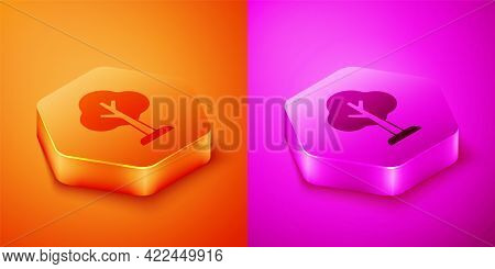 Isometric Tree Icon Isolated On Orange And Pink Background. Forest Symbol. Hexagon Button. Vector