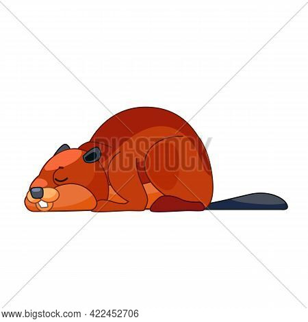 A Beaver Taking A Relaxing. Cartoon Character Of A Small Mammal Animal. A Wild Forest Creature With