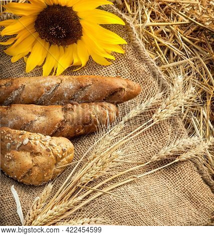 bread and ears of wheat lay on sackcloth in the haystack