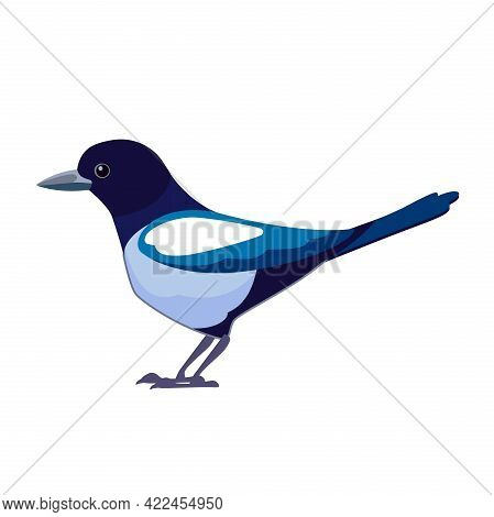 Magpies Are Birds Of The Corvidae Family. Bird Cartoon Flat Style Beautiful Character Of Ornithology
