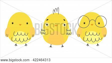 Little Yellow Chickens. Cute Cartoon Yellow Chickens Isolated On White Background. Children's Cartoo