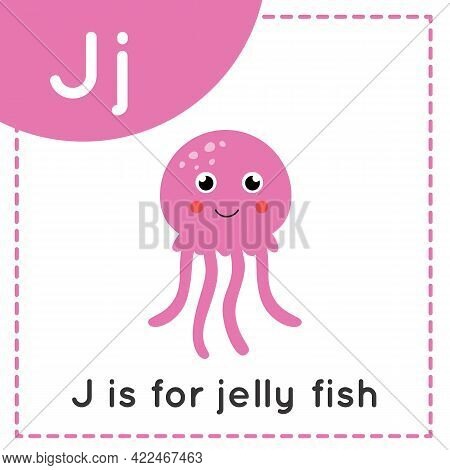 Animal Alphabet Flashcard For Children. Learning Letter J. J Is For Jelly Fish.