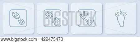 Set Line Human Footprints Shoes, Goose Paw, Paw And Bear. White Square Button. Vector