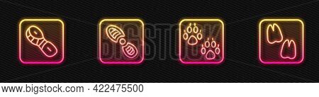Set Line Paw Print, Human Footprints Shoes, And Camel Paw. Glowing Neon Icon. Vector