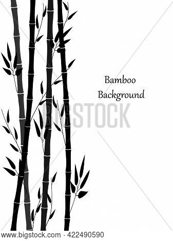 Minimalistic Background With Bamboo. Bamboo Stems And Leaves Are Intertwined. Nice Vertical Border A