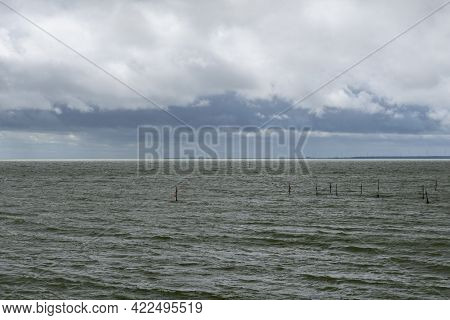 Typical Wadden Sea Landscape In The Northern Netherlands Near Den Oever With Windbeaten Ocean And An
