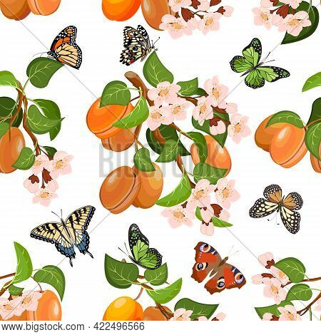 Vector Pattern With Apricots And Flowers.blooming Branches With Apricots And Butterflies On A White