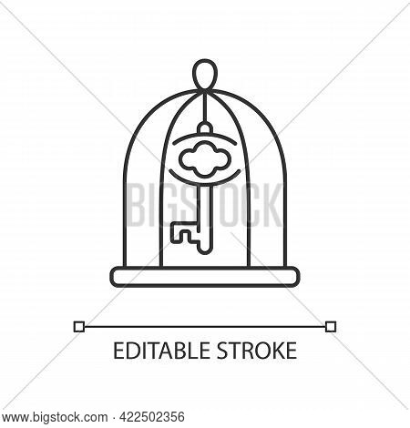 Key In Cage Linear Icon. Gain Access. Solve Difficult Situation. Solving Puzzles. Thin Line Customiz