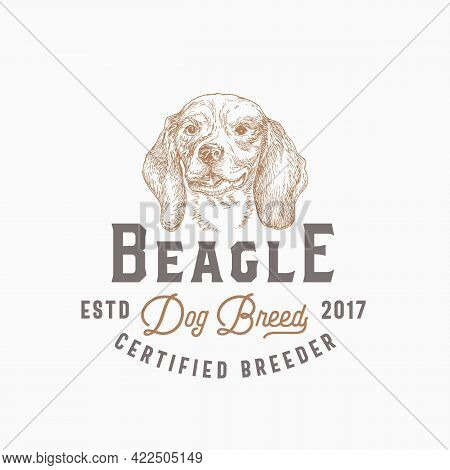 Dog Breeder Badge Or Logo Template. Hand Drawn Beagle Breed Face Sketch With Retro Typography. Vinta