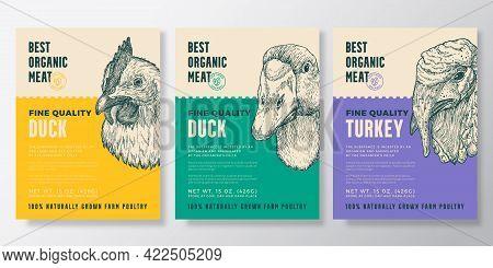 Birds Portrait Organic Poultry Vector Packaging Design Or Label Templates Set. Farm Steaks Banners.