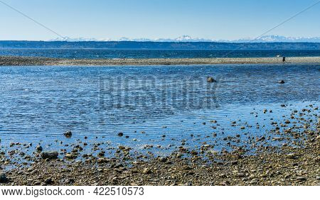 A Tide Pool In Des Moines, Washington With The Olympic Mountains In The Distance.
