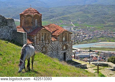 Holy Trinity Church In Berat With A Gazing Donkey
