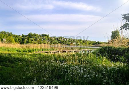 Houses And Summer Cottages On The Lake And A Small Wooden Bridge To It, Grass With Air Dandelions In