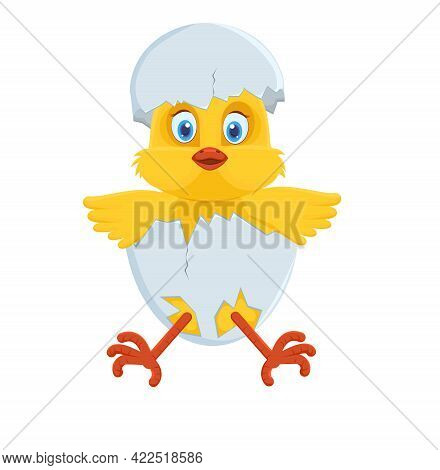 A Cute Little Chicken Sits In A Cracked Egg With Its Wings Spread. Shell On The Head. Isolated. Cart