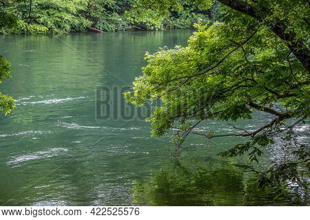 A Fast Moving Current With The Water Above The Shore Of The Riverbanks With The Trees Hanging In The
