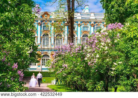 Blooming Lilacs In Catherine Park In Tsarskoe Selo (pushkin), Saint Petersburg, Russia