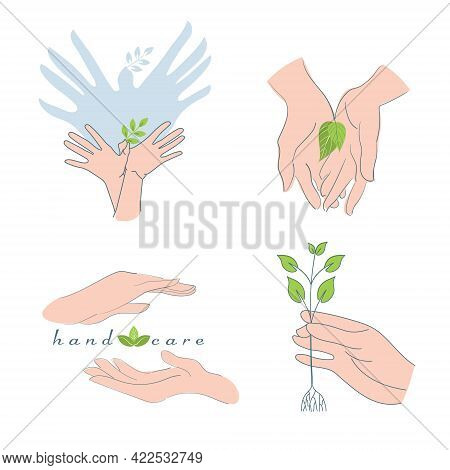 Palms Folded Together, Hand Gestures Denoting Care, Grooming, Environmental Protection, Gardening, P