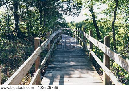 Walking Trail Boardwalk In Ha Ha Tonka State Park In Lake Of The Ozarks, Missouri On A Spring Day