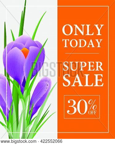 Today Only, Super Sale, Thirty Percent Off Poster Design With Violet Snowdrop On Orange Background.