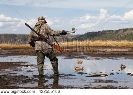 A Waterfowl With A Duck Decoy In His Hand Walks In Muddy Shallow Water. He Prepares For A Duck Hunt