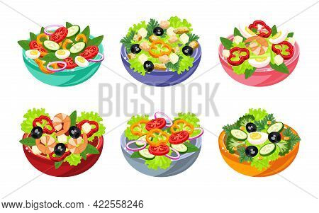 Various Salads Illustration Set In Cartoon Style. Vegetable, Fish And Meat Salad. Healthy And Tasty