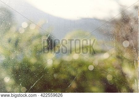 Raindrops On The Window With Green Lush Backyard And Tree Bokeh Shot From Indoor