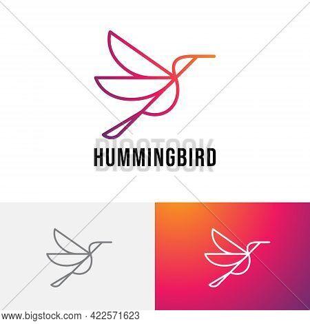 Hummingbird Colibri Bird Flying Beautiful Wings Monoline Logo