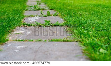 Garden Path From Tiles Among The Grass, Close-up.