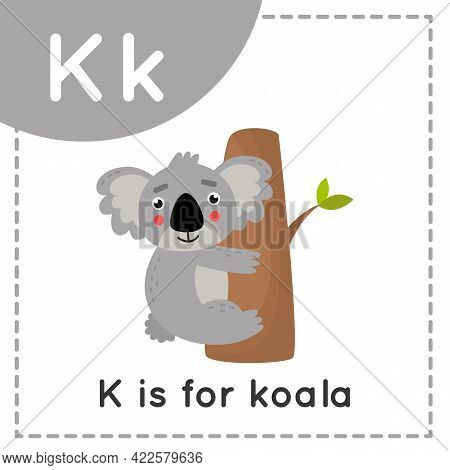 Animal Alphabet Flashcard For Children. Learning Letter I. K Is For Koala.