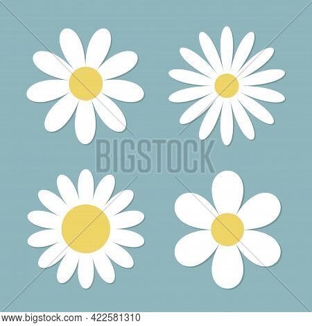 White Daisy Chamomile Flower Round Icon Set. Camomile Petal. Cute Plant Collection. Love Card. Growi