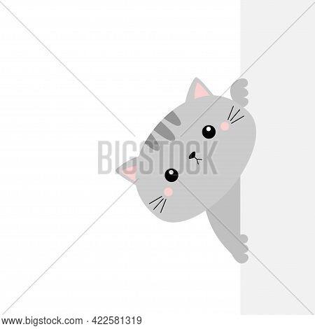 Gray Cat Holding Big Empty Signboard. Cute Cartoon Kawaii Funny Kitten Kitty Hiding Behind Paper Wal