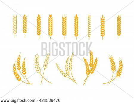 Set Of Wheats Ears Icons And Wheat Design Elements. Harvest Wheat Grain, Growth Rice Stalk And Whole