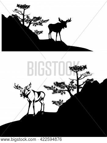 Wild Moose Buck Standing On Pine Covered Rock Cliff - Black And White Vector Silhouette Scene With B
