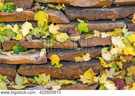 The Background Is Made Of Flat Rough Stones, Neatly Stacked On Top Of Each Other And Randomly Covere
