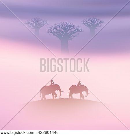 People On Elephants. Family Trip In Savannah. Baobab Tree In Fog