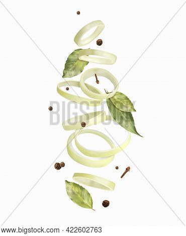 Onion Rings. Composition With Spices. Vector Illustration.