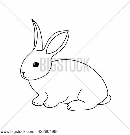 Outline vector Rabbit. Hand drawn Bunny. Doodle Hare. Series of Livestock, Farm Animals. Contour design element isolated for coloring book page, veterinary, rustic, animal husbandry, Easter theme