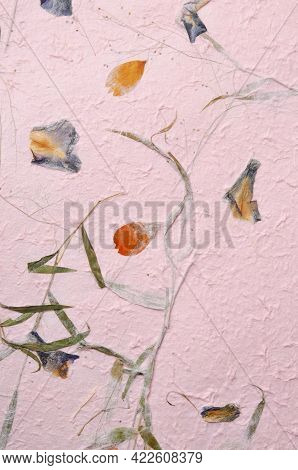Mulberry Paper With Red And Yellow Flower Petal And Seed Texture Background And Wallpaper